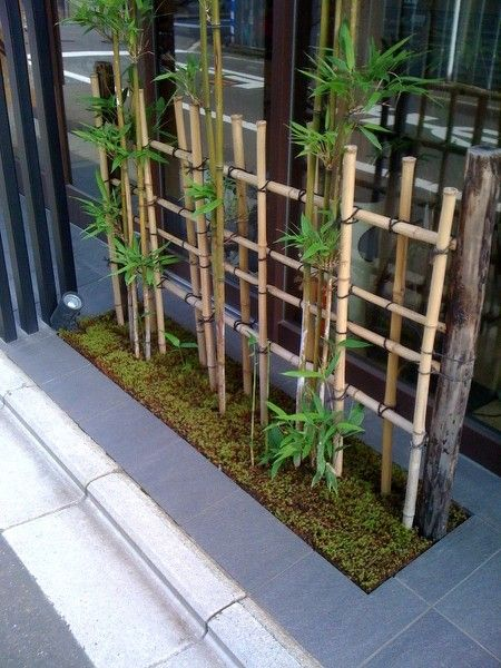 40 interior ideas for bamboo decoration (3)