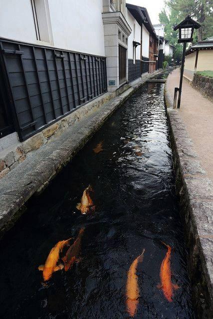 46 beautiful fish pond ideas (11)
