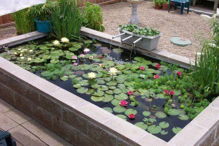 46 beautiful fish pond ideas (23)