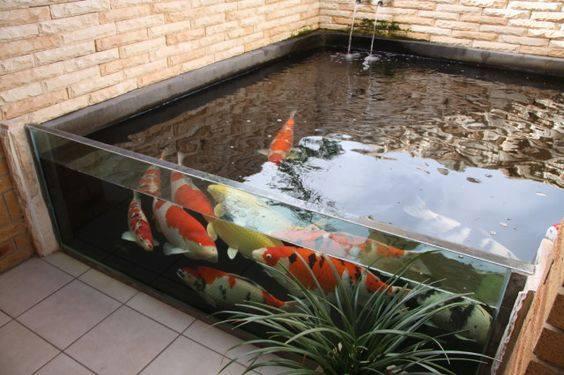 46 beautiful fish pond ideas (24)