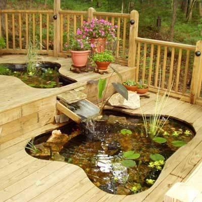 46 beautiful fish pond ideas (28)
