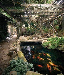 46 beautiful fish pond ideas (29)