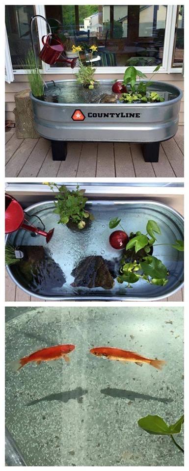 46 beautiful fish pond ideas (31)