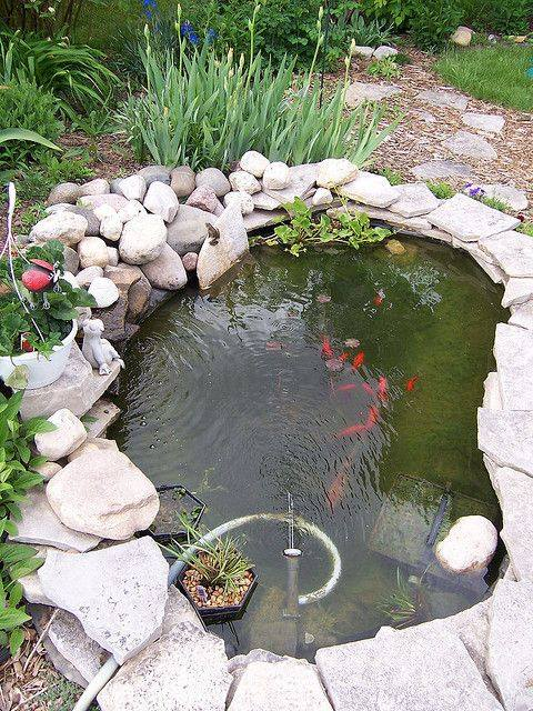 46 beautiful fish pond ideas (34)