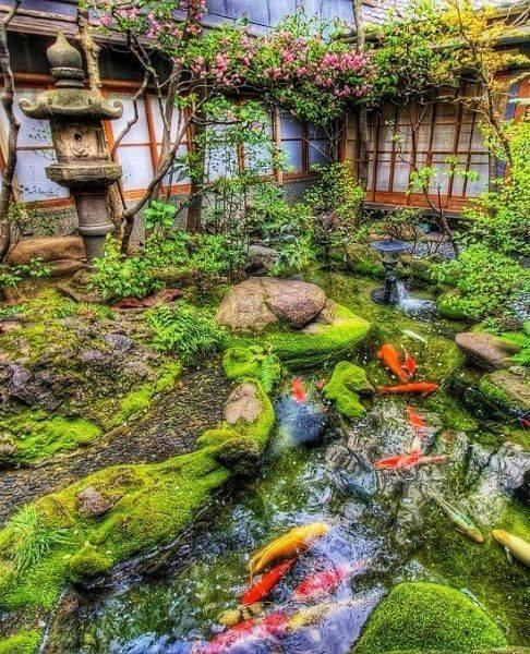 46 beautiful fish pond ideas (36)