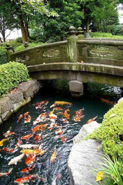 46 beautiful fish pond ideas (40)