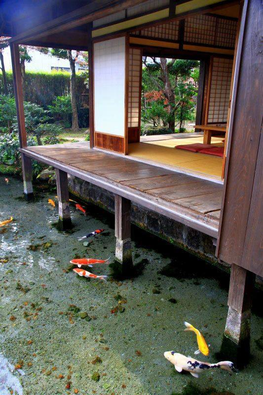 46 beautiful fish pond ideas (42)