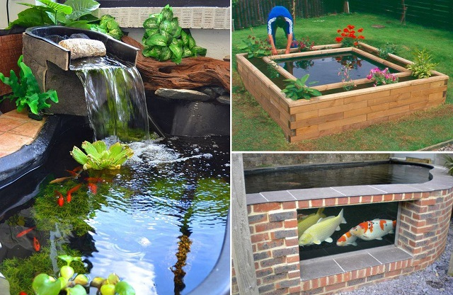 46 for Fish pond cover ideas