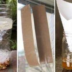 แนะนำ 9 วิธีทำ 'กับดักแมลงวัน' กำจัดแบบตายยกฝูง หมดปัญหาแมลงวันกวนใจ