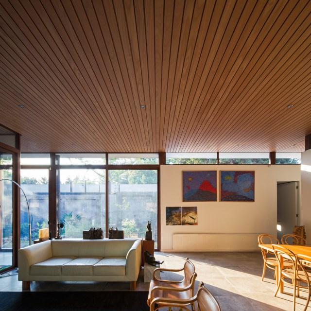 Modern house modern materials between nature (11)