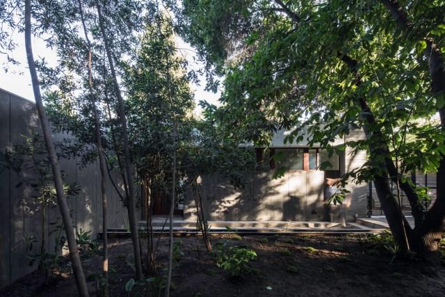 Modern house modern materials between nature (7)
