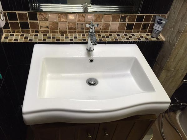 bathroom renovation with dog bath review (28)