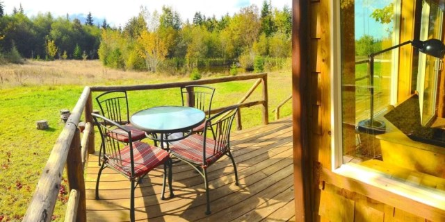 compact cabin cottage platform house (2)