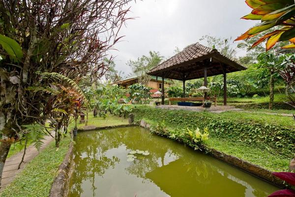 small-nature-hut (11)