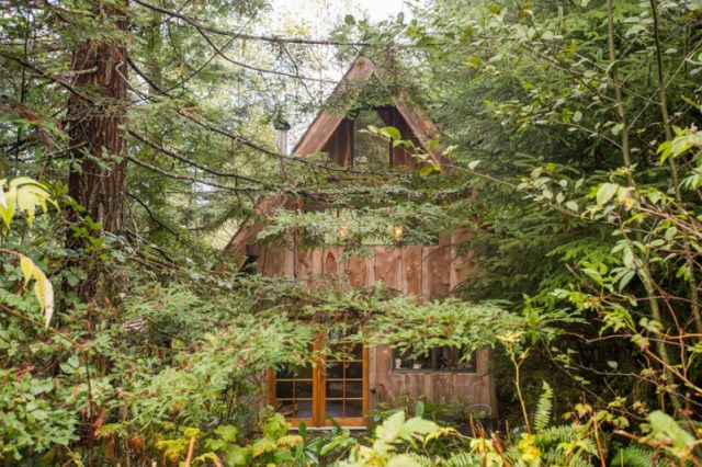 wooden Bunk Cottage House (9)