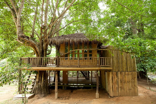 wooden-homestay-house-in-chiangmai (1)