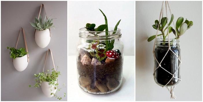15 ideas diy terrarium water garden (12)