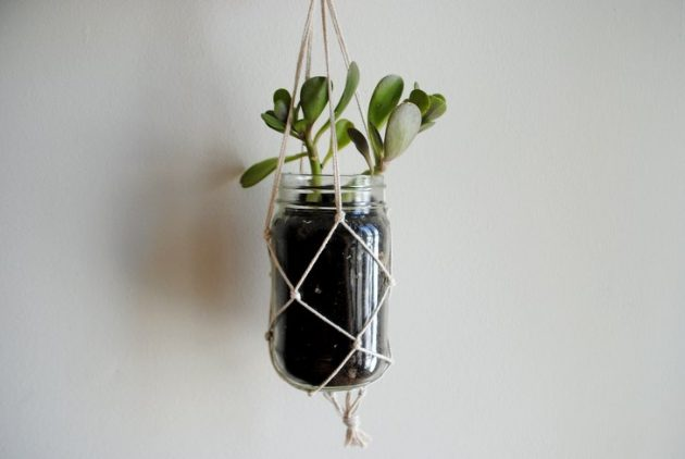 15 ideas diy terrarium water garden (14)