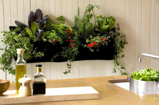 15 ideas diy terrarium water garden (2)