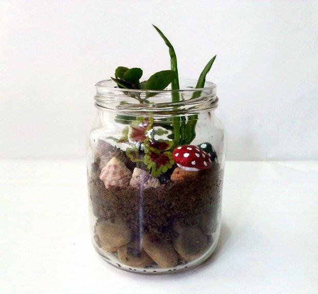 15 ideas diy terrarium water garden (3)