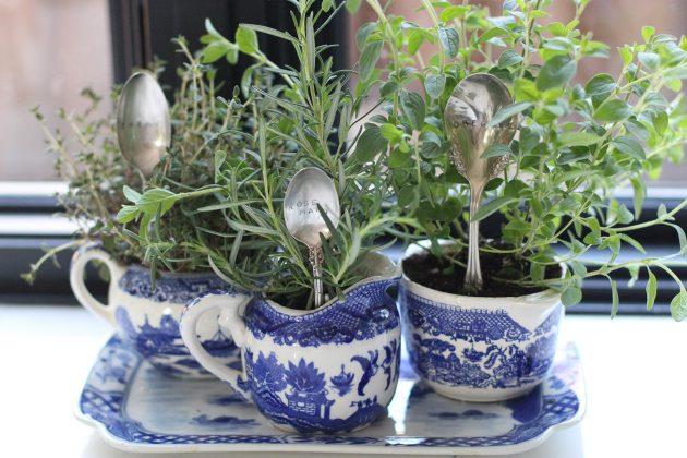 15 ideas diy terrarium water garden (5)