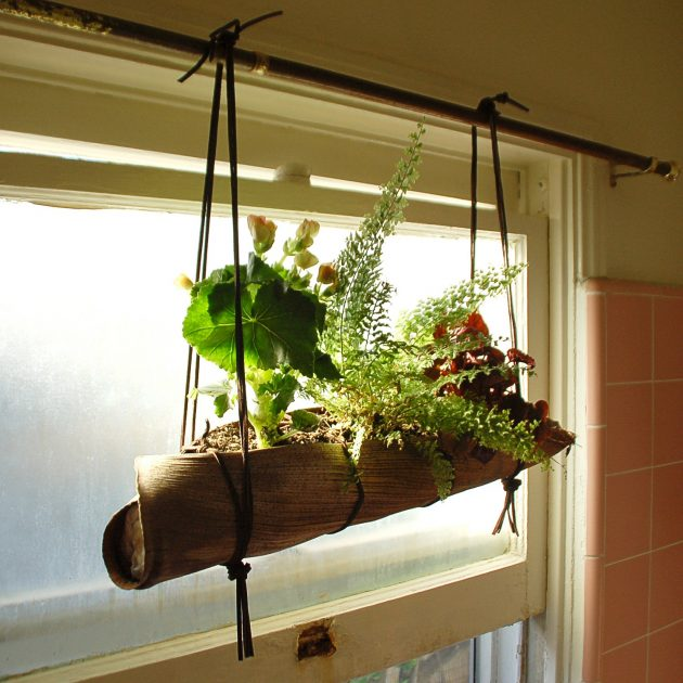 15 ideas diy terrarium water garden (9)