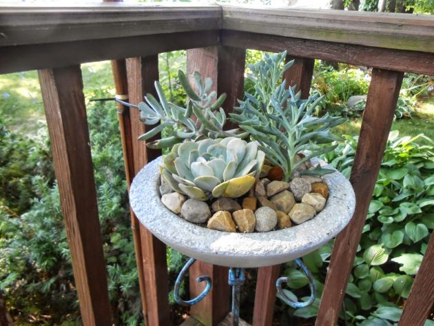 19 Ideas potted plants (14)
