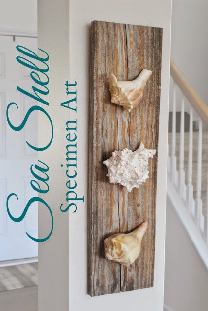 19-fascinating-diy-coastal-wall-decorations-driftwood (17)