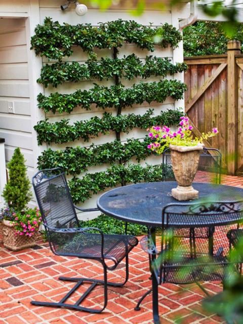 20-backyard-with-narrow-space (13)
