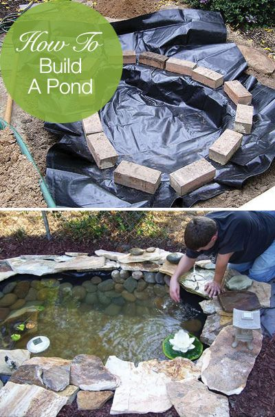 20 diy fish pond ideas (11)