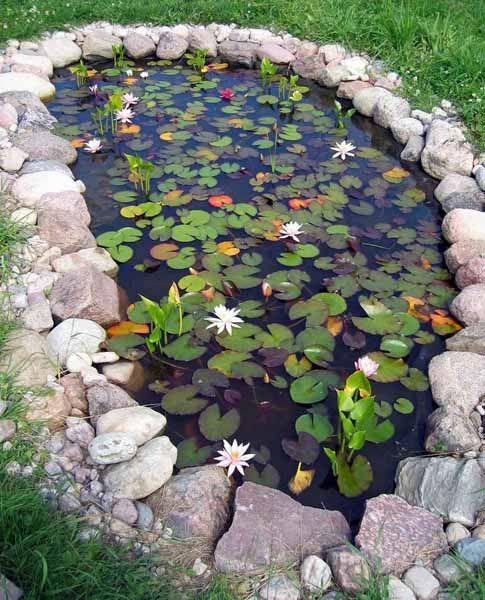 20 diy fish pond ideas (18)