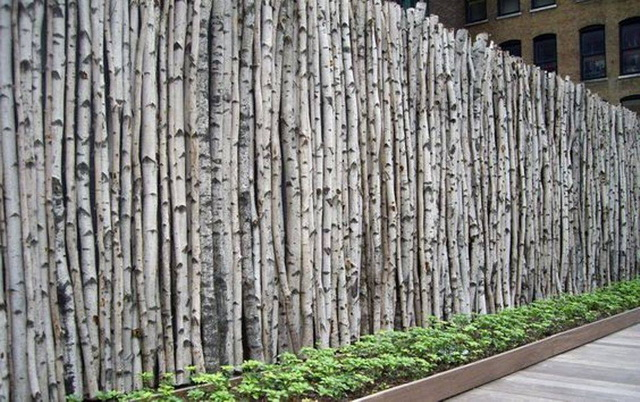 70 beautiful doors and fences ideas (7)