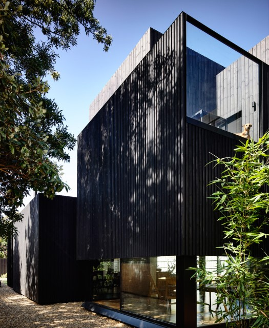 Modern home dark tone with Beautiful gardens (9)