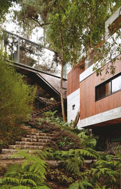 concrete-home-forest-side (15)