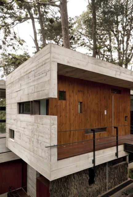 concrete-home-forest-side (21)