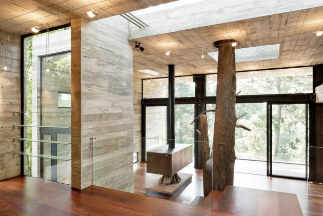 concrete-home-forest-side (3)