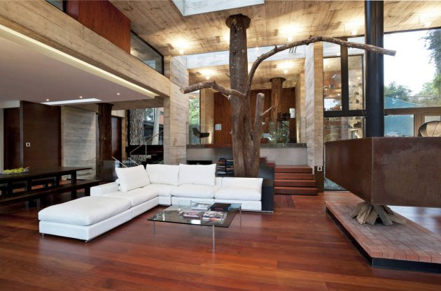 concrete-home-forest-side (4)