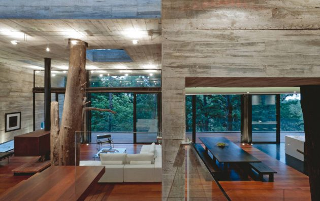concrete-home-forest-side (8)