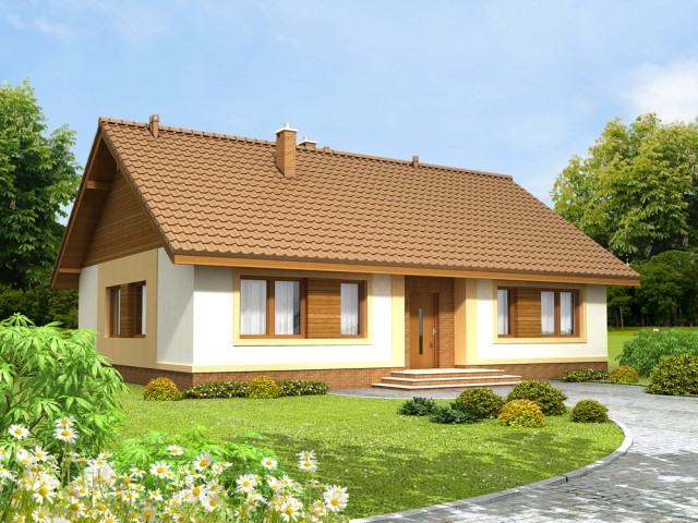 contemporary House elegant design with 3 bedrooms 2 bathrooms (1)