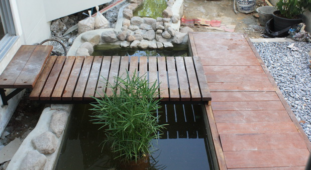 river fish pond review (26)