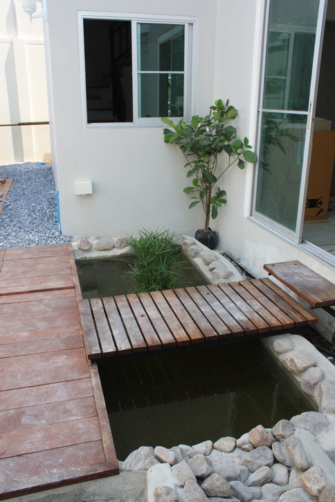 river fish pond review (27)