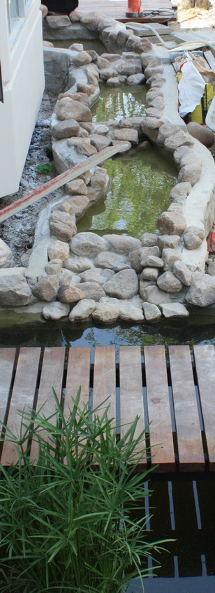 river fish pond review (32)