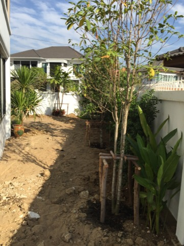 townhome garden review (8)