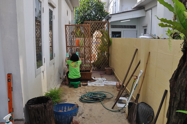 vertical garden review (10)