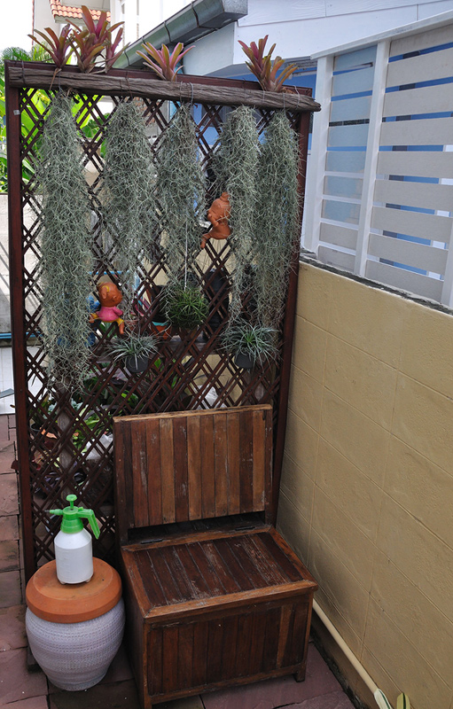 vertical garden review (23)