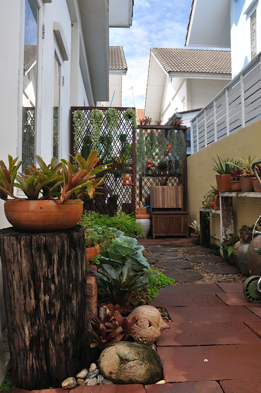 vertical garden review (32)