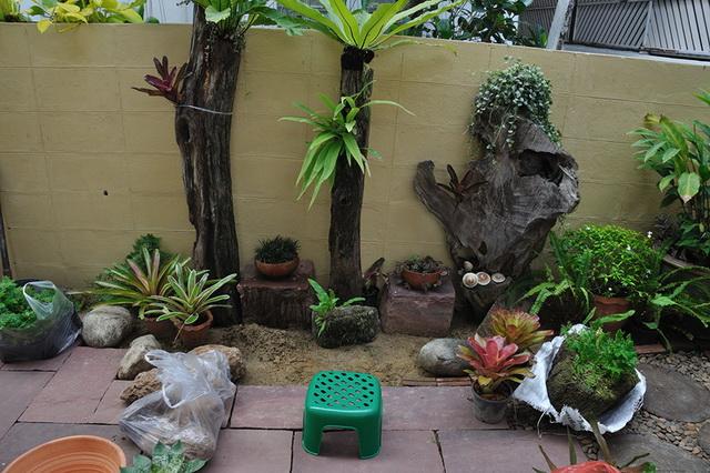 vertical garden review (34)