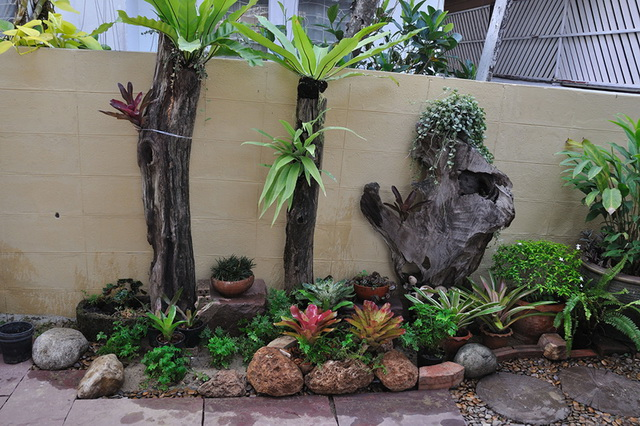 vertical garden review (36)