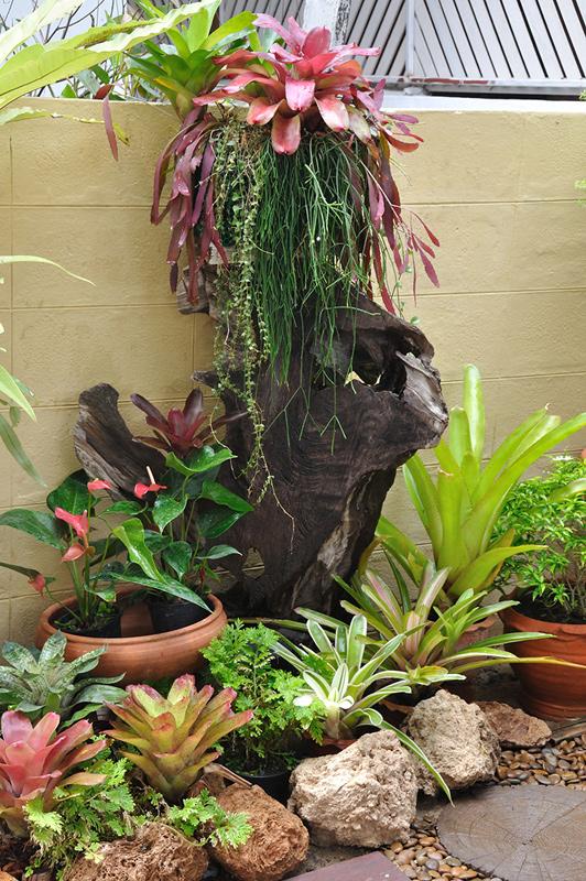 vertical garden review (40)