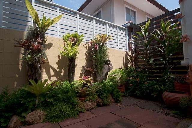vertical garden review (50)